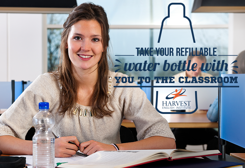 drink water while studying